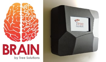 foto Tree Solutions Srl