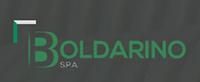 logo Boldarino