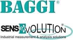 logo B.A.G.G.I. srl